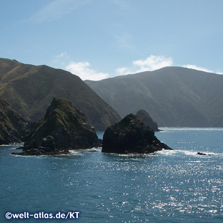 Queen Charlotte Sound, part of Marlborough Sounds