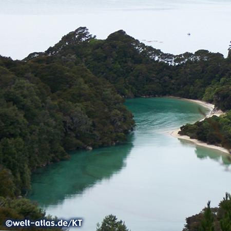 Im Abel-Tasman-Nationalpark finden sich viele kleine Buchten mit Sandstränden, sehr geeignet für Kajaktouren