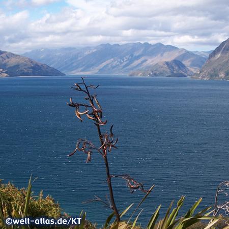 Gletschersee Lake Hawea, beliebt für Sommer- und Winterurlaub