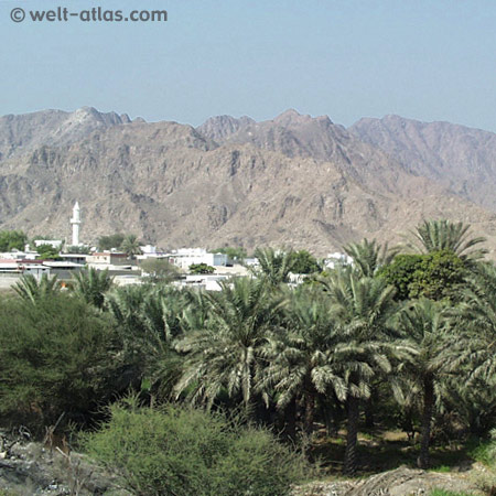 Auf dem Weg nach Hatta, Hajar-Gebirge,VAE