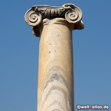 Perge, column with ionic capital
