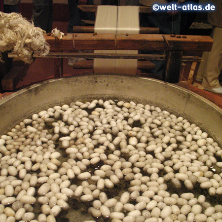 Washing the Silk Cocoons
