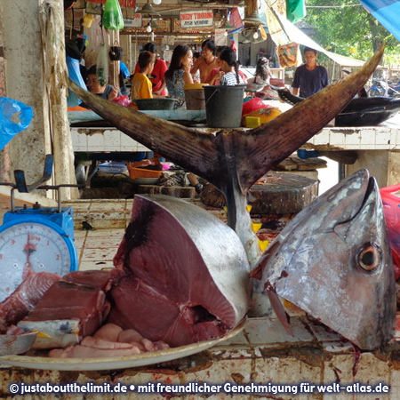 Photo sipalay fish market welt for Local fish market