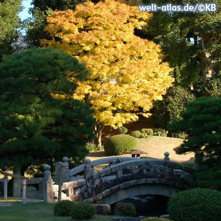 Autumn leaves in a Japanese garden with old stone bridge