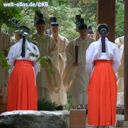 Ceremony at a Shinto shrine with miko and priests