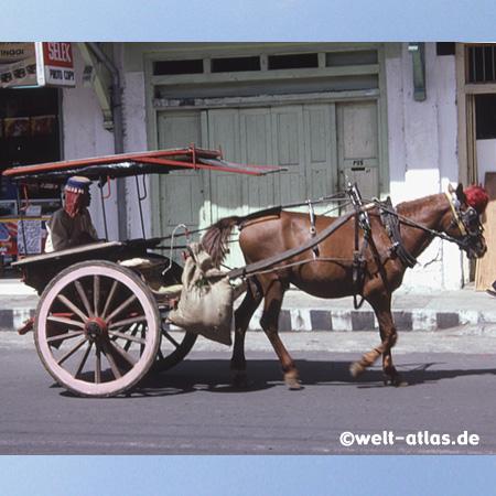 Horse Cart, Sumatra