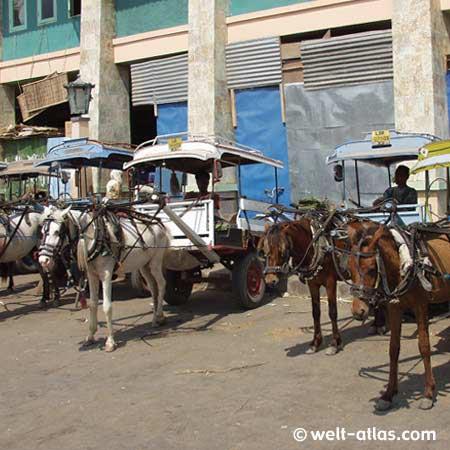 """praktisch und günstig,Pferdekutschen vor der Markthalle""""Lombok-Taxi"""""""