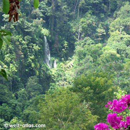 Waterfall Sendang Gila, Lombok, Indonesia