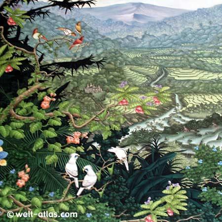 Reisterrassen und Vulkan mit bunten Vögeln