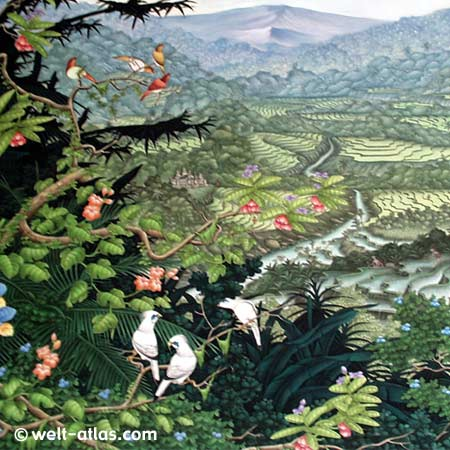 Rice terraces and volcano with multicolored birds