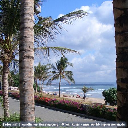Palms, beach and ocean, Bali