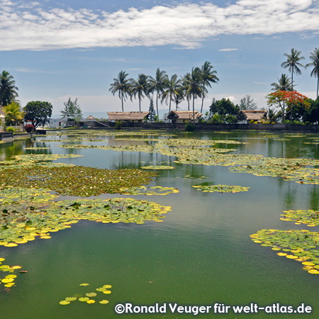 The beautiful Lotus Lagoon at Candidasa beach