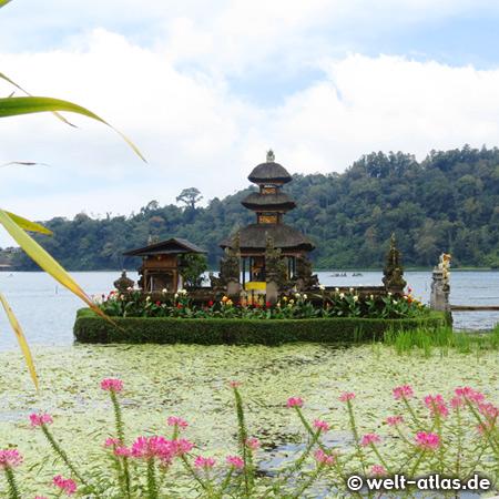 Hinduistischer Wassertempel (Pura Ulun Danu Bratan) am Bratansee, Bali