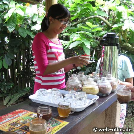 Probieren von aromatisierten Tees und Katzenkaffee (Kopi Luwak)