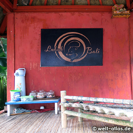 Here you can try the special coffee from Bali