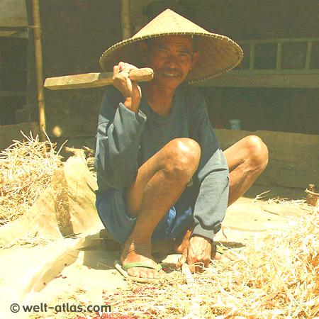 Bauer mit Hut bei der Bohnenverarbeitung