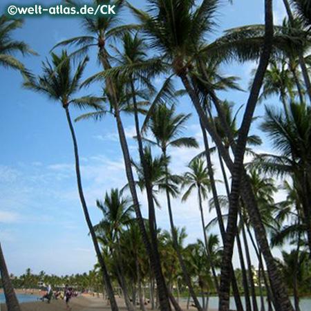 Waikoloa Beach auf Big Island, Hawaii