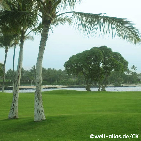 Waikoloa auf Big Island, Hawaii