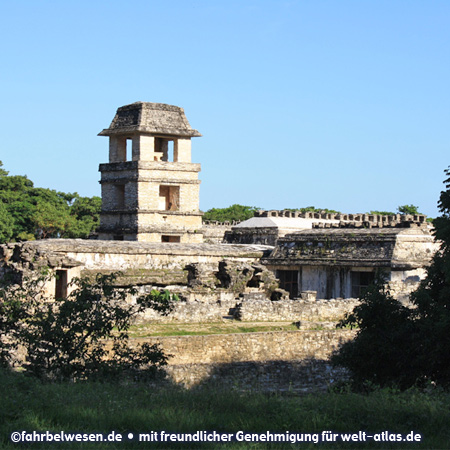 Palast in den Mayaruinen von Palenque – UNESCO-Weltkulturerbe – Foto:©fahrbelwesen.de