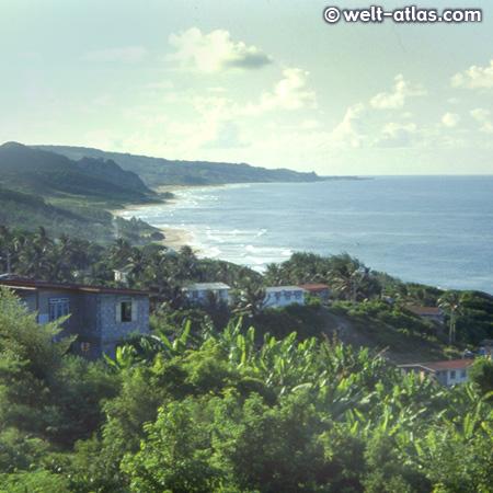 Barbados rauhe Atlantikküste, beliebte Küste für Surfer