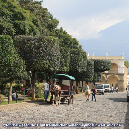 Park and horse cart in in Antigua Guatemala