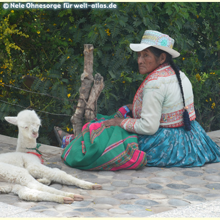 Sitzende Frau in Chivay in ihrer schönen Tracht und einem weißen Alpaka , Foto:©Nele Ohnesorge