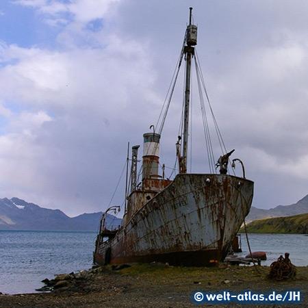 Shipwreck, Grytviken Harbour, South Georgia