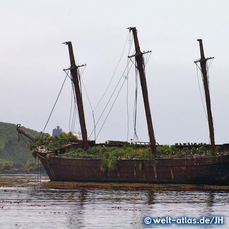 Wreck of Bayard, bay of Ocean Harbour, South Georgia